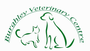 Burghley Vets -